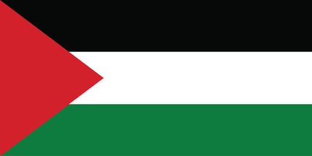 Vector background  of palestine flag Illustration