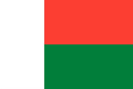 background of madagascar flag. 向量圖像