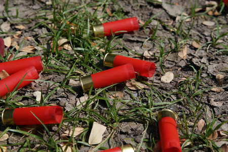 shotgun bullets shell on the ground Stock Photo