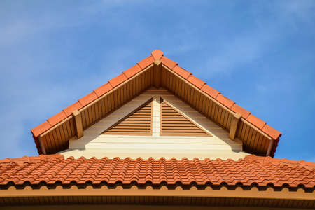 Tile Roof Texture with Windows photo