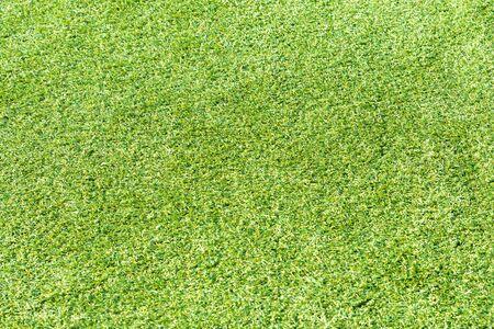 artificial turf background under sunshine