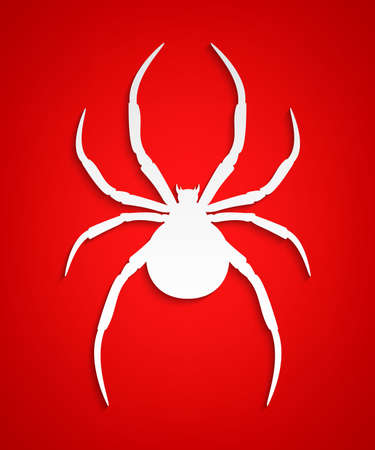 Vector spider. Black widow. Spider background. Paper spider on red background.