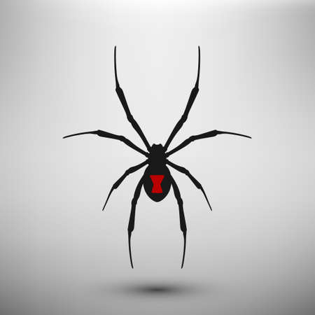 poison symbol: Spider widow icon.  Vector isolated.