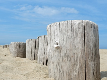 burgh: Wooden poles on the beach Stock Photo