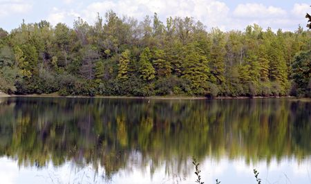 reflecting: Trees reflecting in the calm water of a lake
