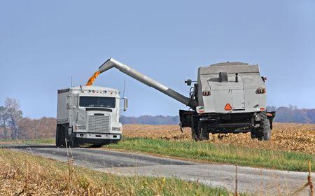 Transfert de maïs à partir d'une combiner dans un camion Banque d'images - 3834346