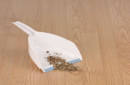 Dust pan with dirt on a hardwood floor Reklamní fotografie - 5511268
