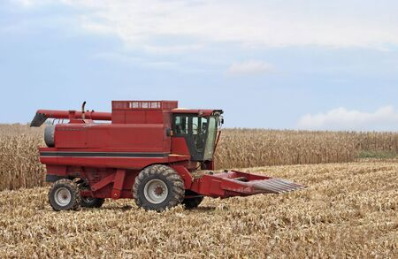 Red combine for harvesting corn in a corn field photo