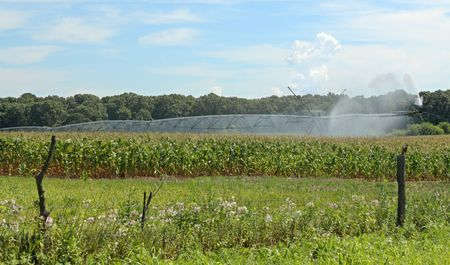 Irrigating a corn field against a blue sky with clouds