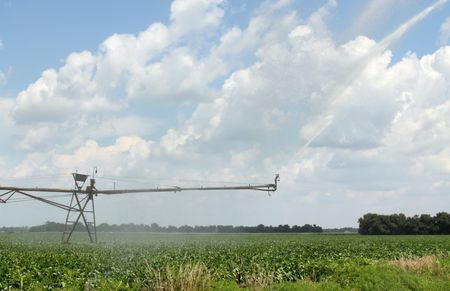 Irrigating a soybean field with a blue sky and clouds photo