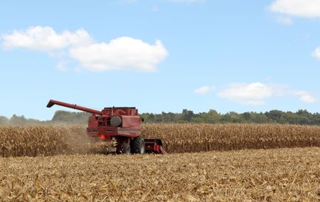Harvesting corn with a combine against a blue sky with some clouds photo