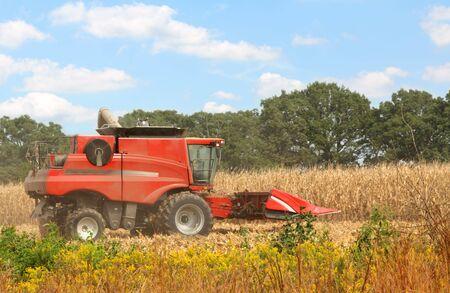 Red farm corn combine in a corn field photo