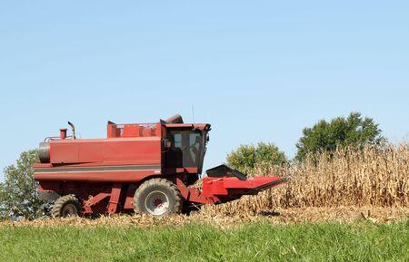 Red farm corn combine in a corn field agaist a blue sky photo