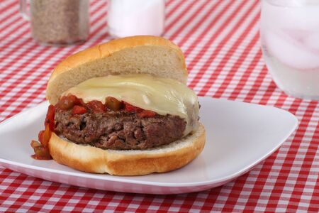 Hamburger topped with salsa and melted cheese on a bun Stock Photo - 7976687