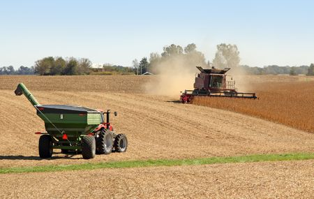 Combine harvesting soybeans and a tractor and wagon 版權商用圖片