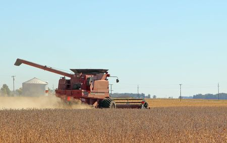 Red combine harvesting soybeans on a clear day
