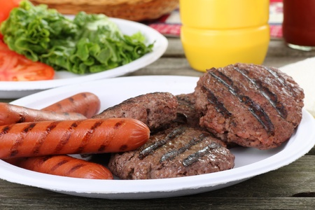 plate: Grilled hamburgers and hot dogs on a picnic plate