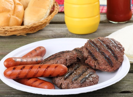 wiener dog: Grilled hamburgers and hot dogs on a picnic table