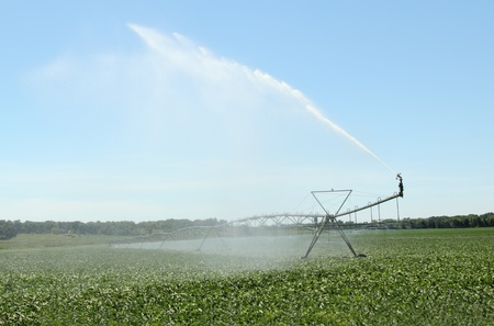 Irrigating a farm field of soy beans photo