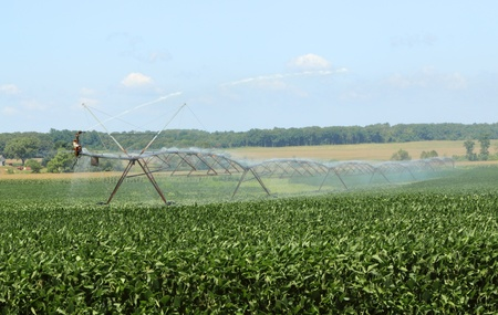 Irrigating a farm field of soy beans Stock Photo