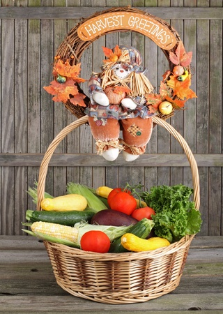egg plant: Corn, squash, tomatoes, lettuce and egg plant in a basket Stock Photo