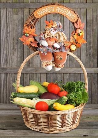 egg plant: Planta de ma�z, calabaza, tomate, lechuga y huevos en una canasta Foto de archivo