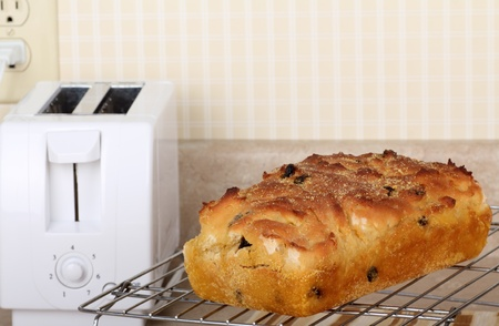 Baked raisin bread on a cooling rack Imagens
