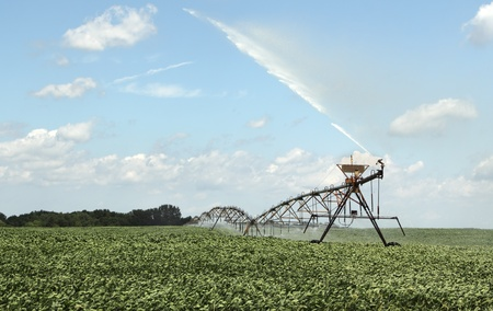 Irrigating farm field of a crop of soybeans