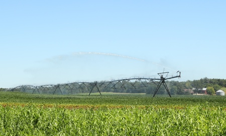 Irrigating a farm field of green soybeans photo