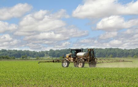 Agricultural sprayer spraying chemicals on a corn crop