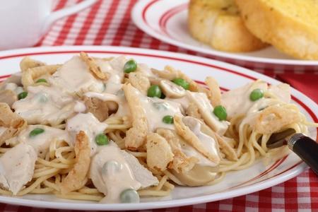alfredo: Closeup of chicken tetrazzini meal with spaghetti