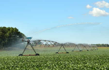 Irrigation system watering a crop of soy beans