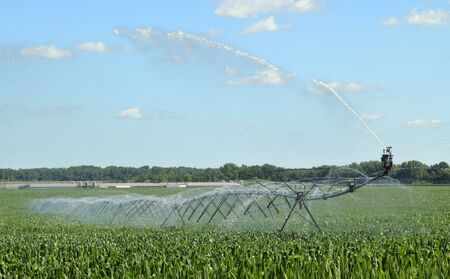 Irrigation system watering a corn farm field