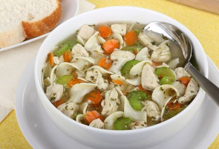 chicken noodle: Chicken and noodle soup in a white bowl