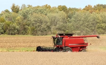 Red combine harvesting a crop of soybeans Stock Photo - 15894153