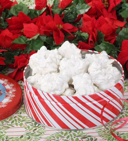 White Christmas cookies in a red and white cookie tin Stock Photo - 16522182
