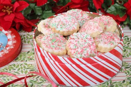 Christmas shortbread sugar cookies in a red and white tin Stock Photo - 16576035