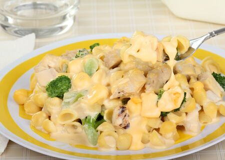 Macaroni, chicken and broccoli with melted cheese Stock Photo - 16936359