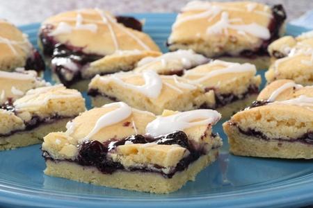 Blueberry fruit dessert bars on a platter Stock Photo - 17222535