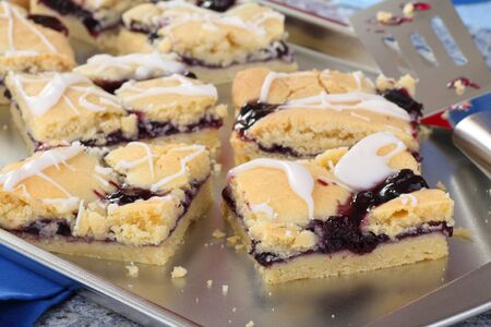 Sliced blueberry fruit bars on a baking sheet Stock Photo - 17273222