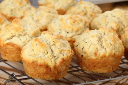 Baked herb muffins on a cooling rack Stock Photo - 17717002