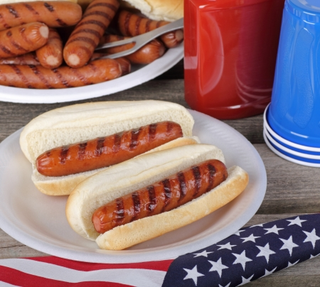 Two grilled hot dogs on buns next to american flag