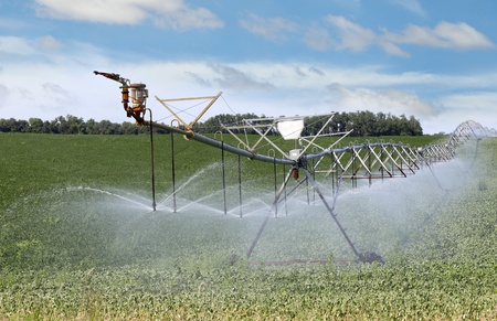 Irrigation equipment watering a field of plants Stok Fotoğraf