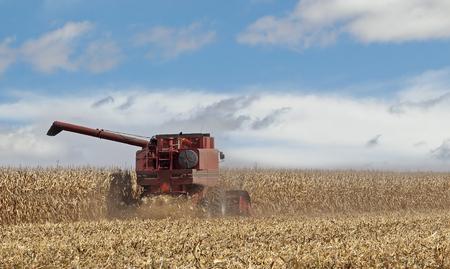 combine: Red combine harvesting a farm field of corn