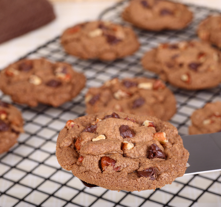 pecan: Chocolate chip and pecan cookie on a spatula Stock Photo