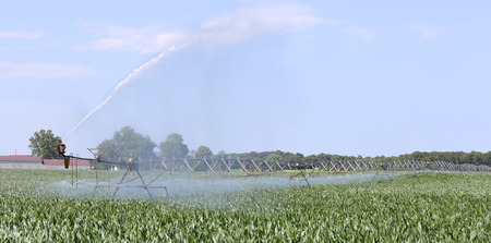Irrigation system watering a field of corn Stok Fotoğraf