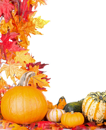 pumpkin leaves: Pumpkin and gourds with autumn leaf border on a white background