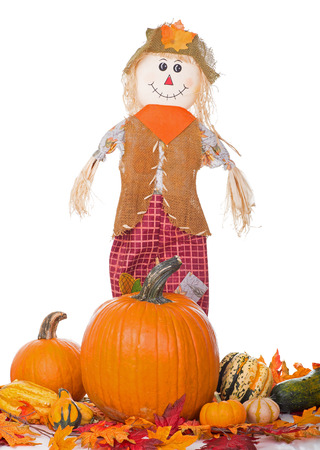 Scarecrow with pumpkin and squash on a white background