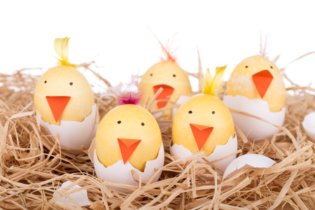 Group of Easter eggs decorated as hatching chicks