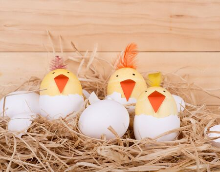 Easter eggs decorated as chicks hatching in a nest on a wood background